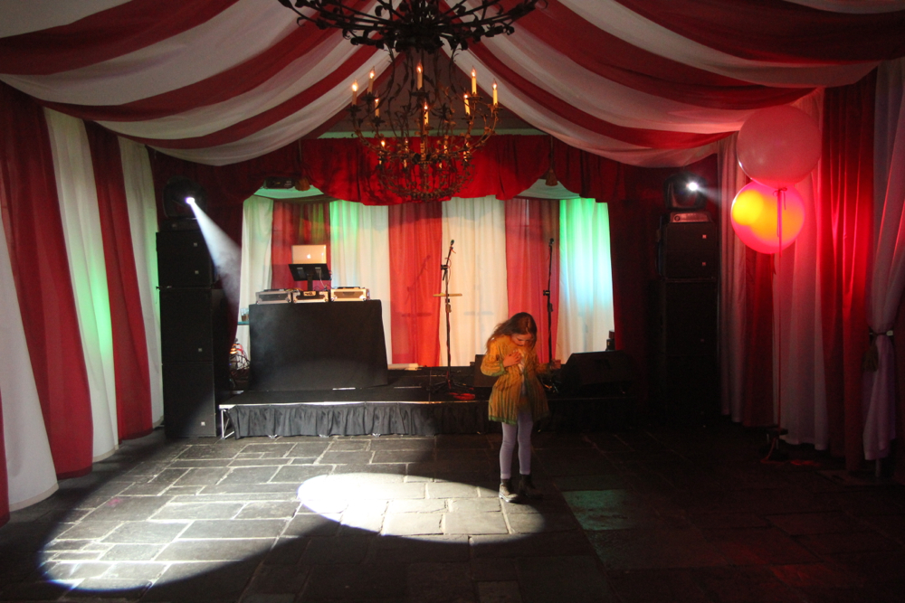 Circus Themed Party.jpg