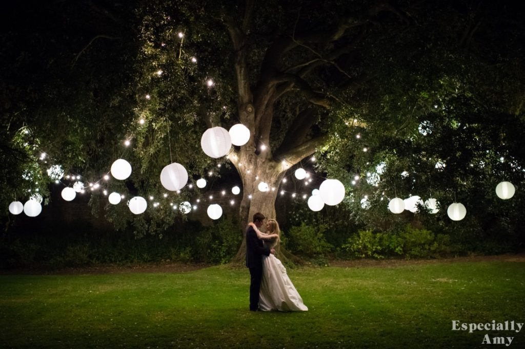 Image of a large tree with festoon lighting and shades from Smedmore House in Dorset.